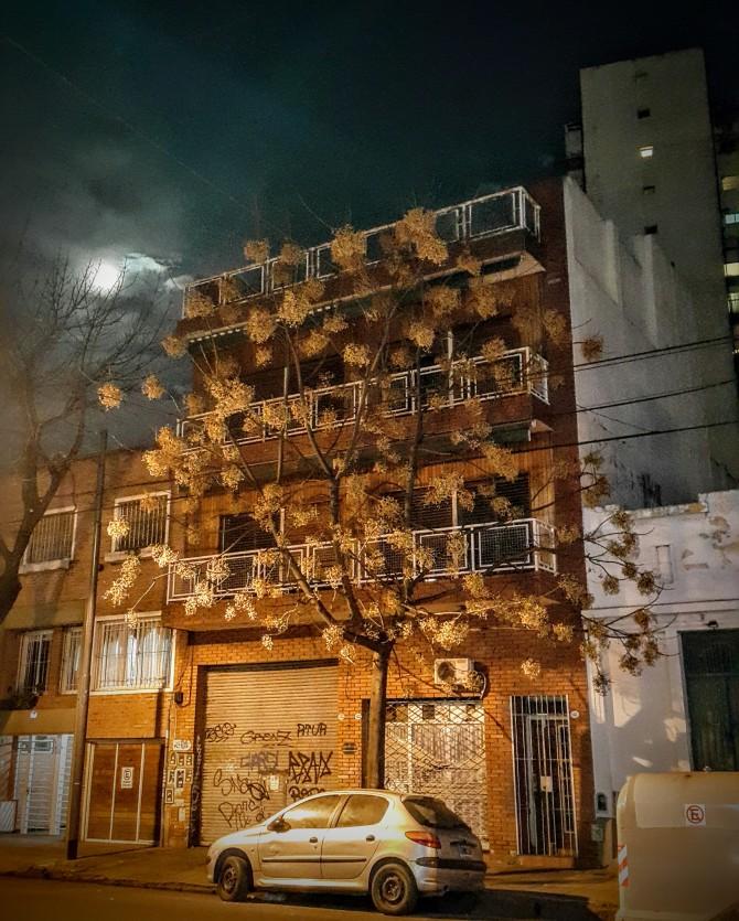 Luna llena en Palermo Ciudad Autónoma de Buenos Aires.  Foto: David Encina V.